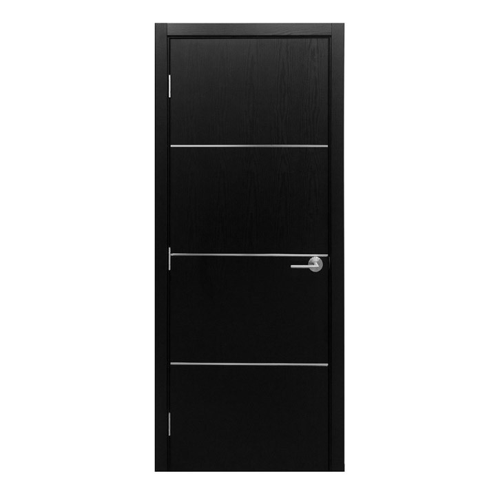 Modern Interior Door HG 008 BLACK ASH